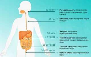 Какие ферменты лучше принимать при панкреатите?