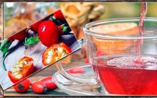 Лечение шиповником желудочно-кишечных заболеваний