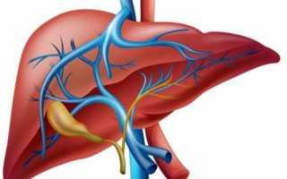 Что такое дисфункция печени и нарушение барьерной функции?