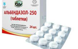 Чем лечить глисты у взрослых людей: лучшие таблетки от паразитов с инструкцией