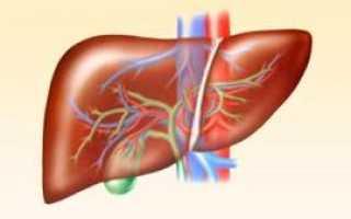 Маркеры гепатитов: лабораторная диагностика вирусных заболеваний