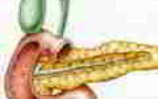 Пищеварение в двенадцатиперстной кишке