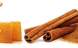 Лечение и чистка печени медом — популярные рецепты