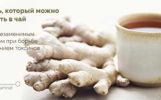 Чай при тошноте и рвоте, способы помочь