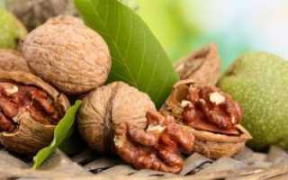 Польза орехов для печени: какие виды стоит предпочесть и почему