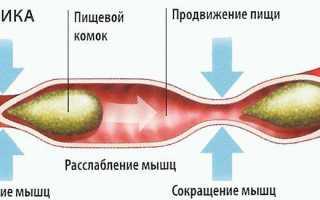 Препараты для улучшения перистальтики кишечника