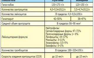 Лабораторные исследования на гепатит С: как долго делаются анализы на ВГС