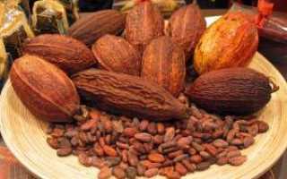 Можно ли какао при гастрите? Правильное питание при болезнях ЖКТ. Польза и вред какао