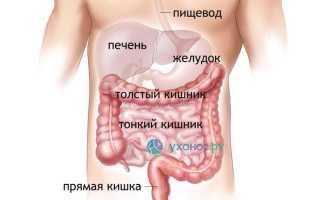 Чем отличается ротавирусная инфекция от обычной кишечной?