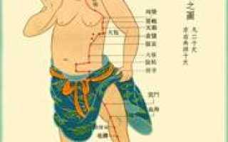 Меридиан селезенки и поджелудочной железы