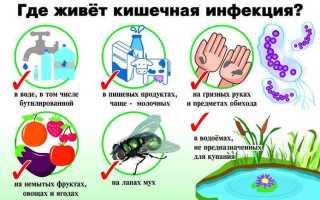 Диета при кишечной инфекции: примеры меню и рецепты блюд