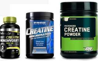 Почему возникает понос от спортивного питания: протеина, гейнера, жиросжигателей?