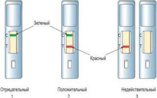 Как использовать экспресс-тест из аптеки для определения скрытой крови в кале?