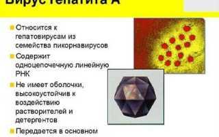Первые признаки и симптомы вирусного гепатита А у детей, диета и профилактика