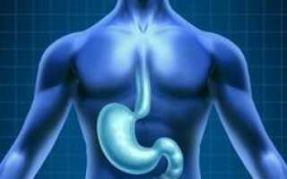 Недифференцированный рак желудка: причины, симптомы и методы лечения заболевания