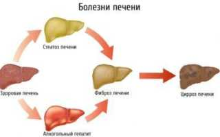 Восстановление клеток печени препаратами, продуктами и народными средствами