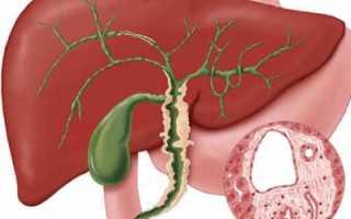Холангит и холецистит лечение народными средствами