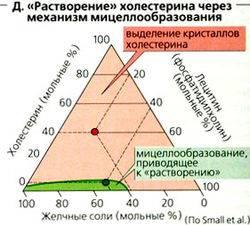 250px-Naglydnay_fiziologiya259.jpg