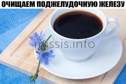 1521908578_cikoriy-i-podzheludochnaya-zheleza.jpg