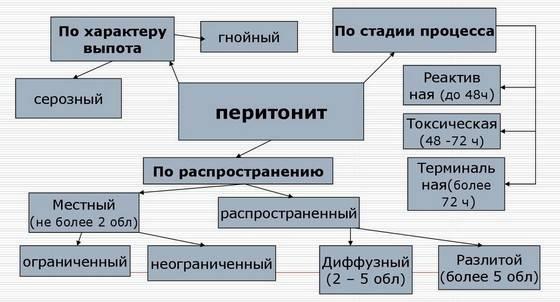 Vidy-1.jpg