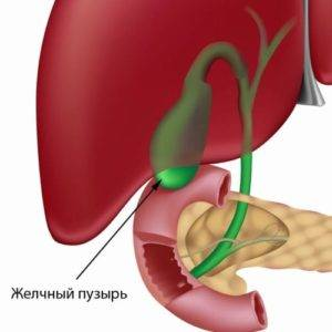 gallbladder-form-300x300.jpg