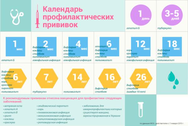 Календарь-прививок-1-600x403.png