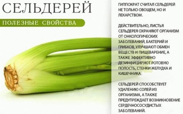 atroficheskiy-gastrit-simptomy-i-lechenie-12.jpg