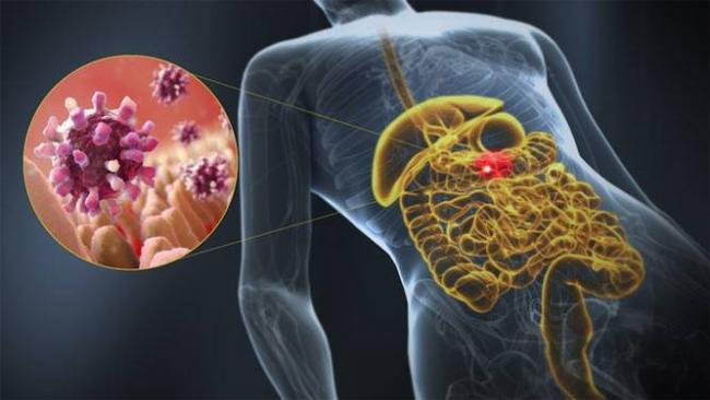 bakterialnaya-infektsiya.jpg