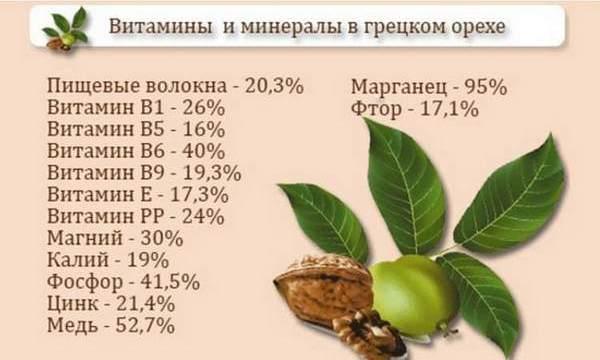 grecki-oreh-pri-ponose-5.jpg