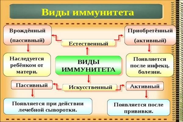 ponos-u-rebenka-4-let-2.jpg