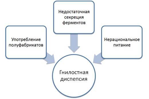gnilostnaya-dispepsiya.jpg
