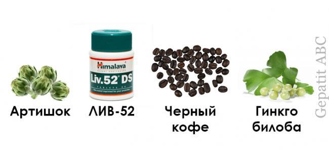 Артишок-ЛИВ-52-черный-кофе-Гинкго-билоба.png