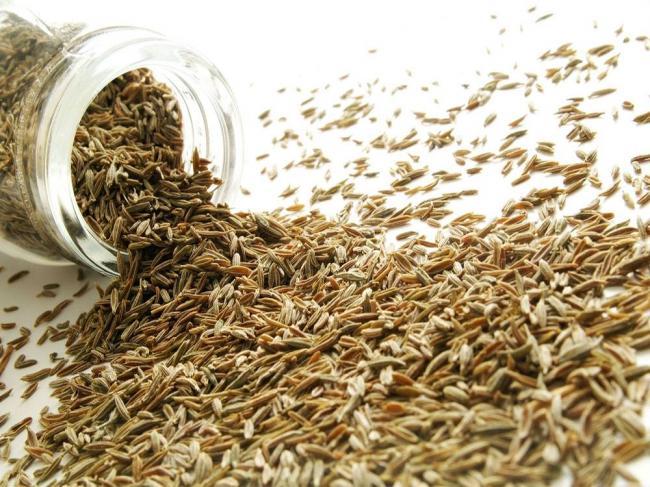 semena-ziry.jpg