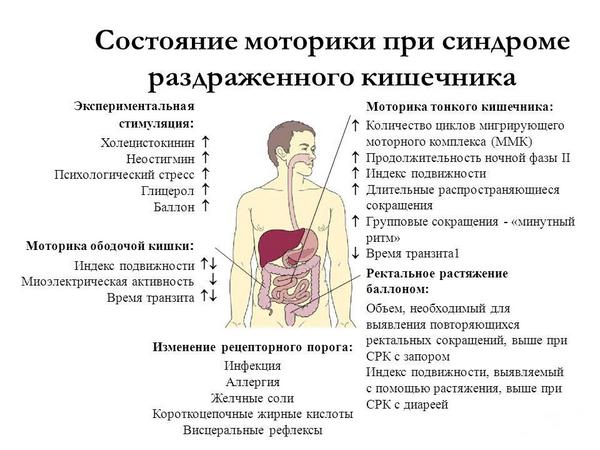 sostoyaniye-motoriki-pri-sindrome-razdrazhennogo-kishechnika.png