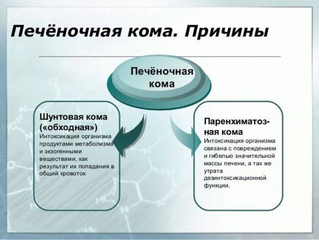 prichinyi-komyi-pechenochnoy-740x556.jpg