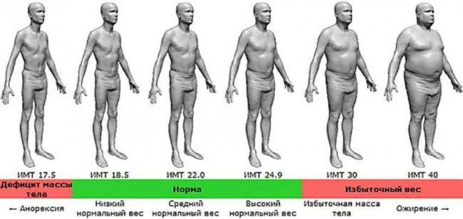 степени-ожирения-у-мужчин-схема.jpg