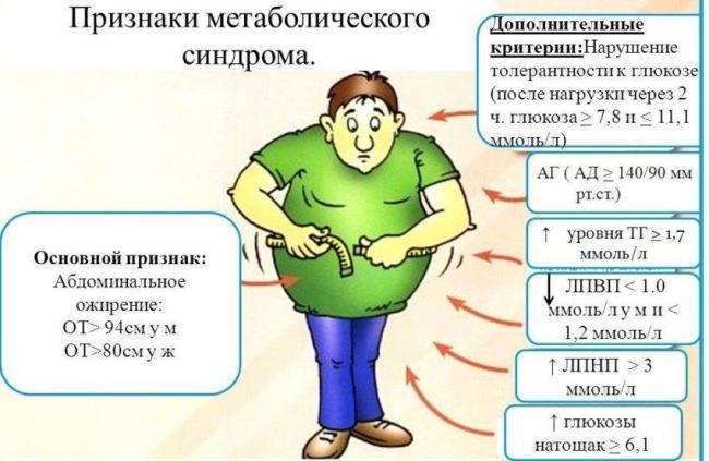 метаболистический-синдром.jpg