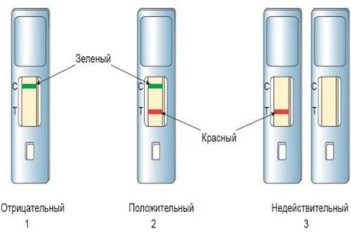 Rasshifrovka-jekspress-testa-na-skrytuju-krov-v-kale.jpg