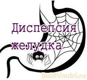 dispepsiy_kische-300x276.jpg