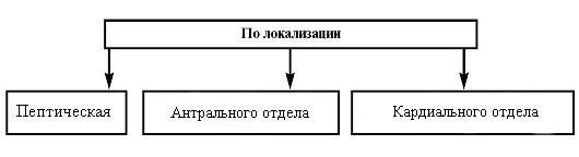 klassifikatsiya-yazvy-zheludka-po-lokalizatsii-zabolevaniya.jpg