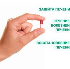 health5.jpg