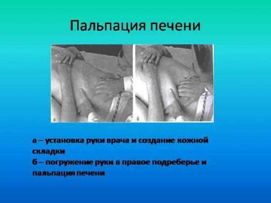 rak-pech-5-550x413.jpg