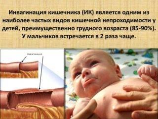 slide-4-2-320x240.jpg