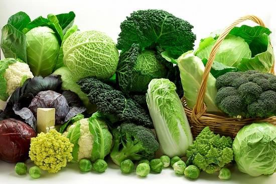 Vegetables_Cabbage_Many_422713.jpg