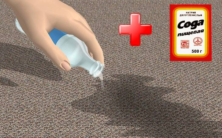 d6f-ways-to-get-dog-urine-smell-out-of-carpet.jpg