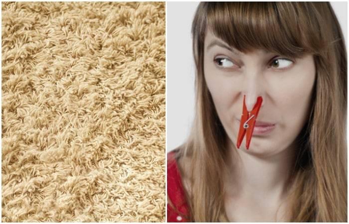 get-ride-smelly-carpet-novate1.jpg