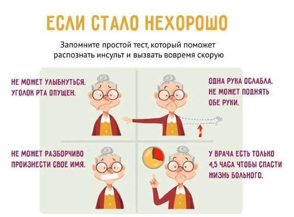 toshnota-i-rvota-pri-insulte-prichiny-mekhanizmy-chto-ehto-znachit-prognoz-pomoshch-4.jpg