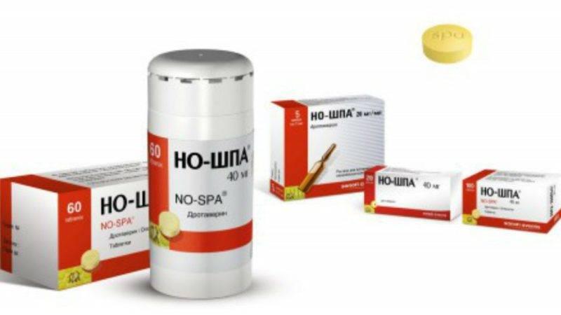 No-shpa-instruktsiya-po-primeneniyu-e1504162901866.jpg
