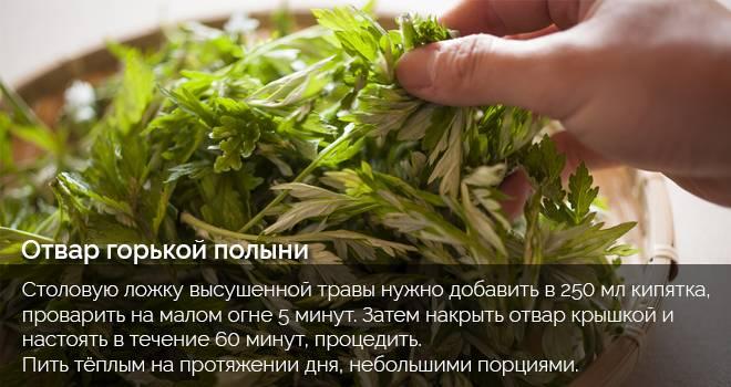 recept_s_polynyu.jpg