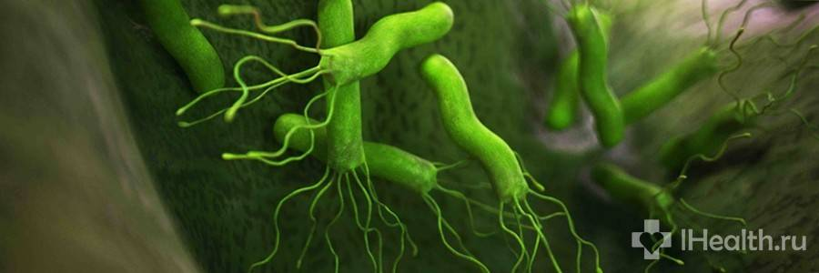 bakterii-helicobacter-pylori.jpg